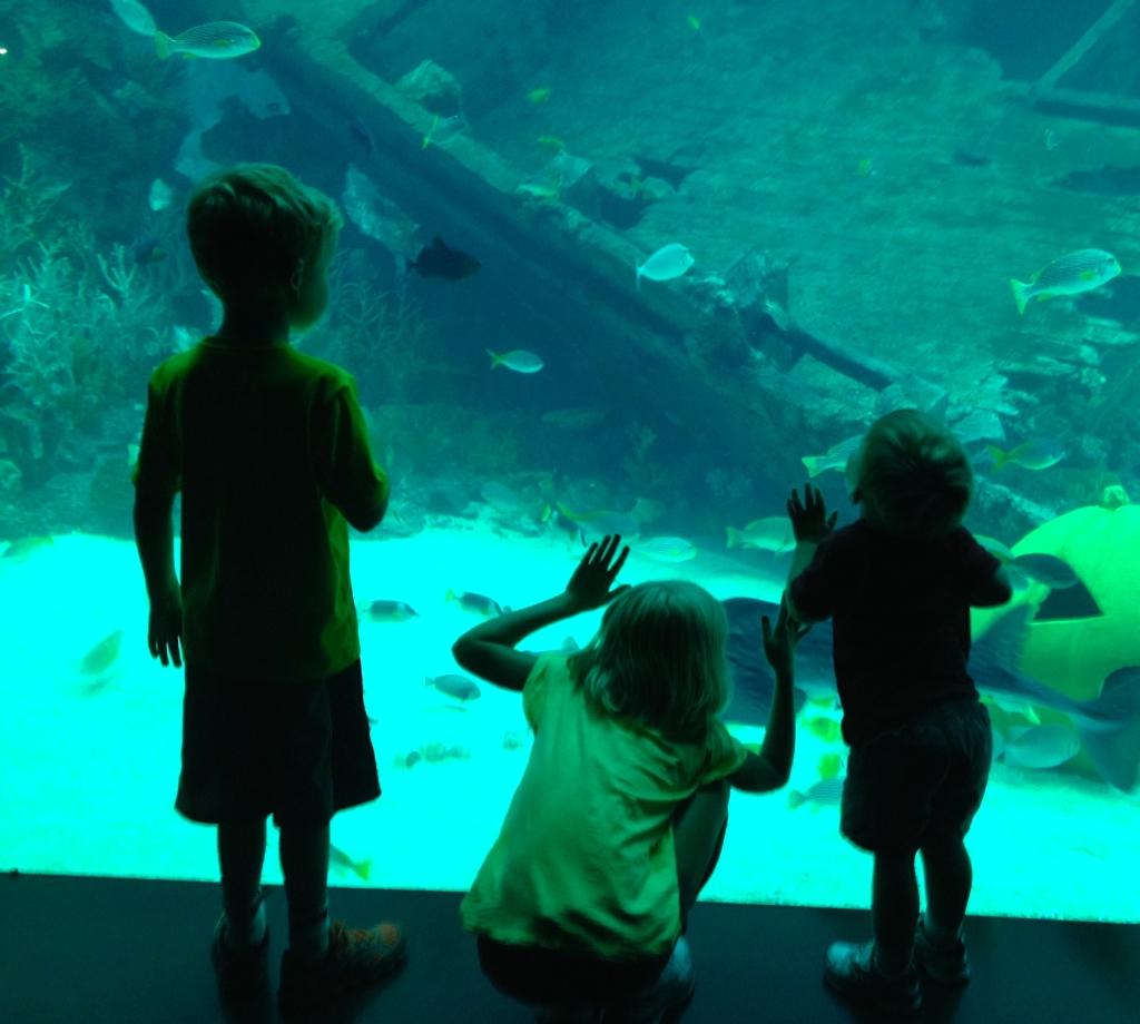 Aquarium at Sentosa in Singapore